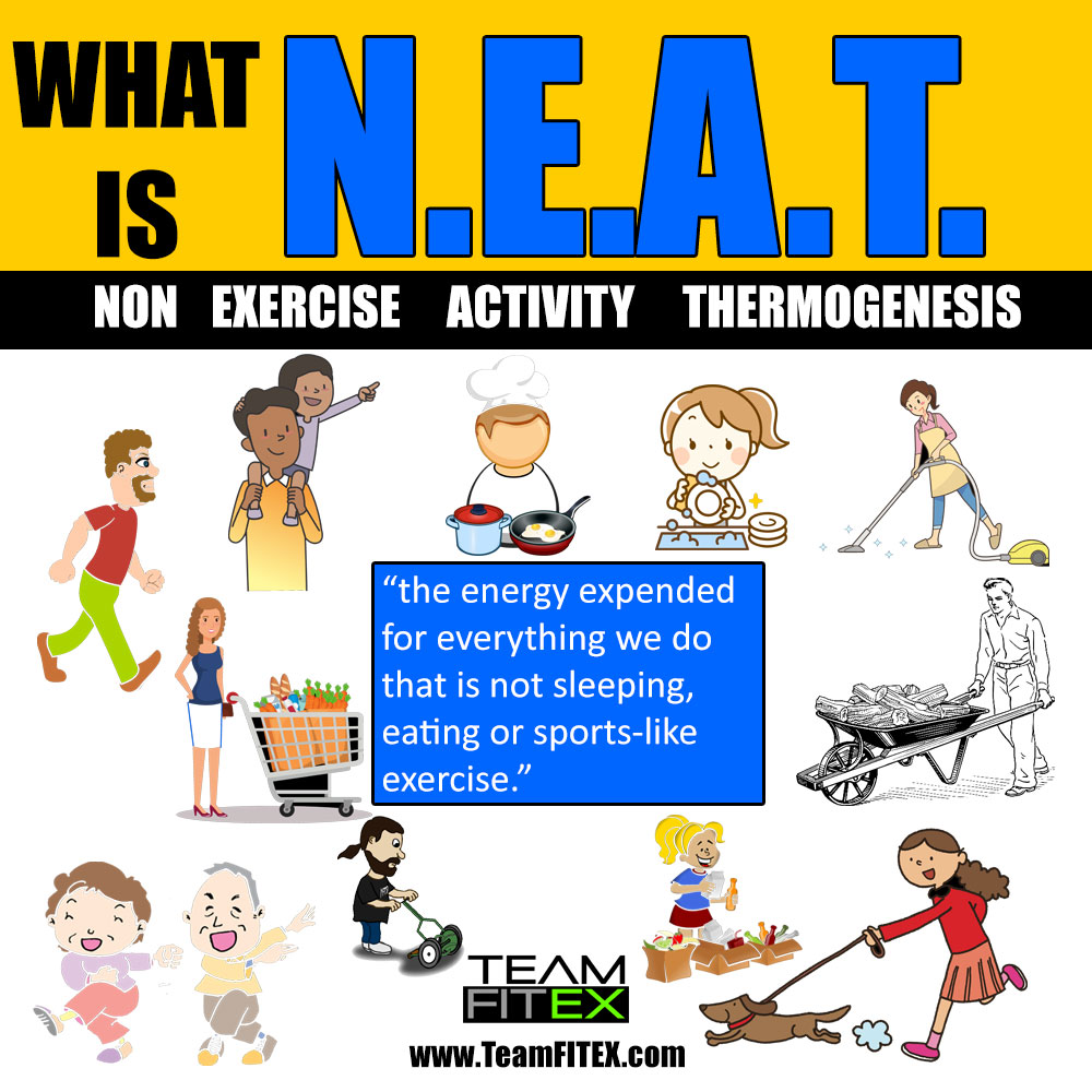 What is NEAT and why doing more of it can speed up fat loss – Fitness  Excelsior